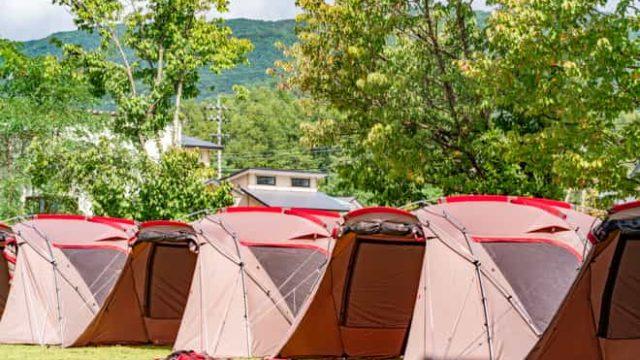 ランドステーション白馬の芝生に建てられた多くのテント